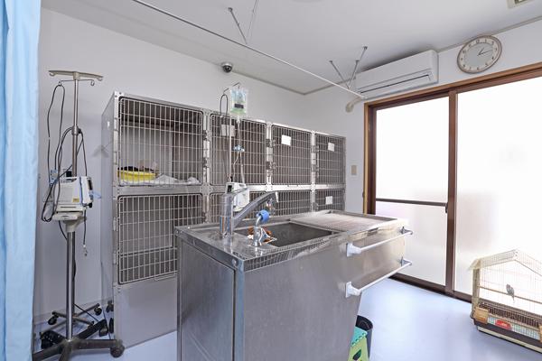 猫用入院室